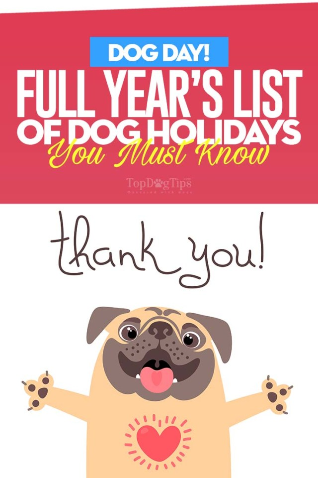 A Full Year's List of All Dog Holidays