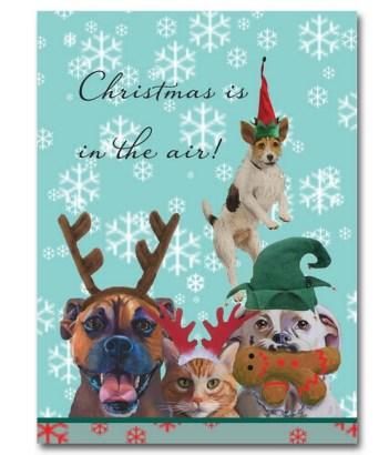 Santa's Helpers Christmas Cards by Graviss