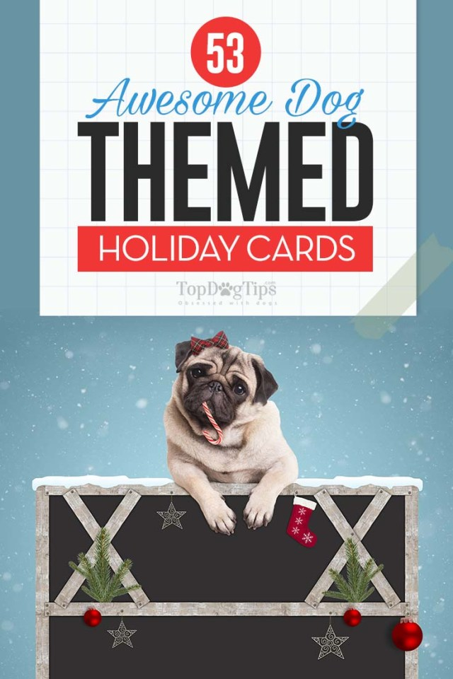 Top Awesome Dog Holiday Cards