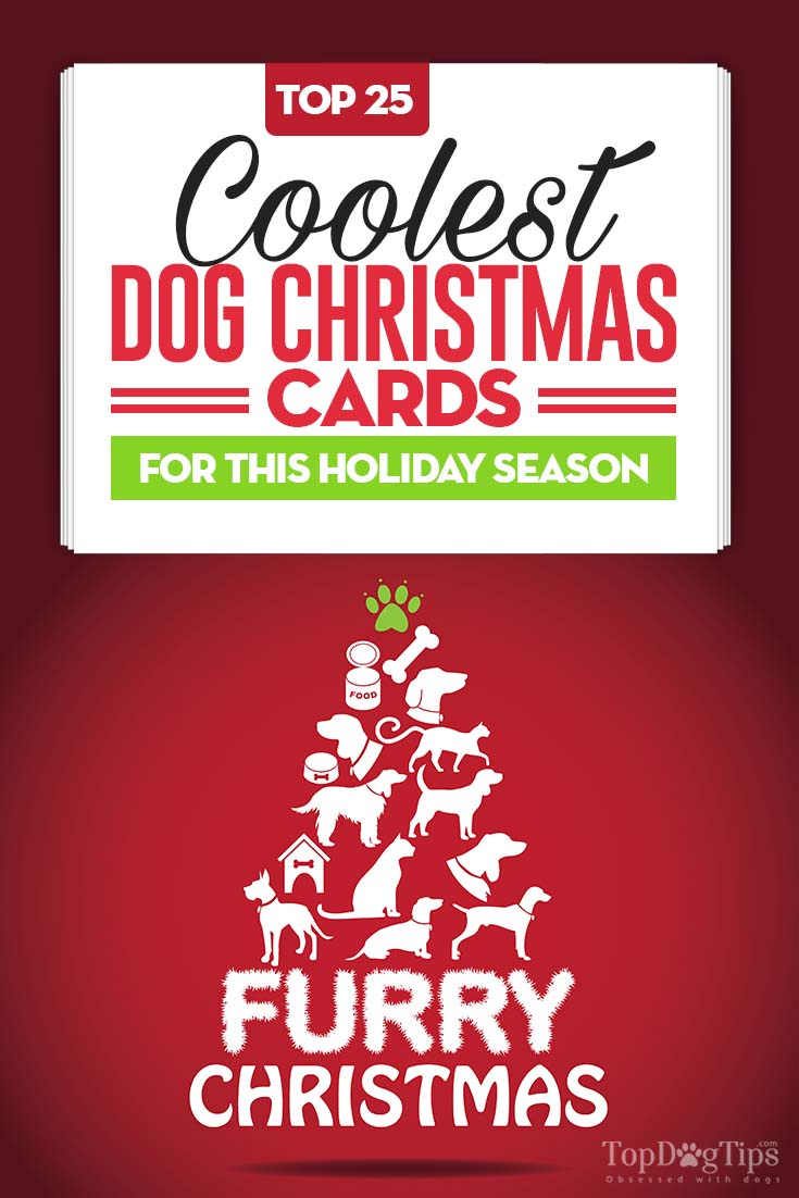 25 Cool And Unique Dog Christmas Cards For Pet Owners