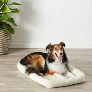 AmazonBasics Padded Pet Bolster Bed
