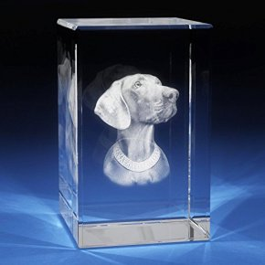 XXL 3D Laser Crystal Glass Etched Engrave Paperweight