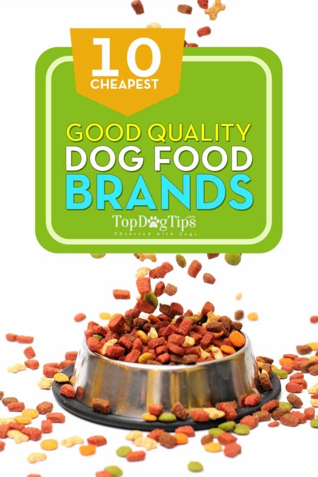 10 Top Rated Best Cheap Dog Food Brands