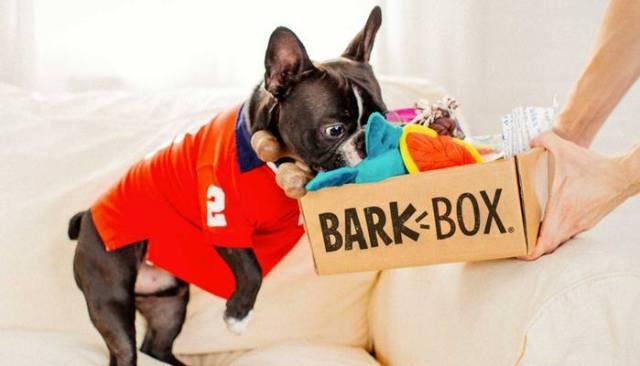Bark Box dog subscription box review