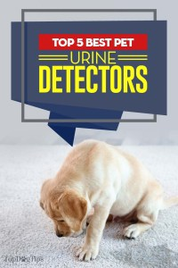 The Best Dog Urine Detector