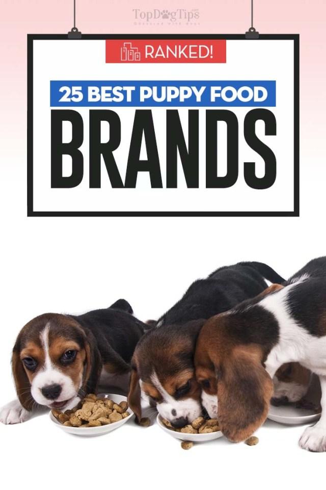 Best Puppy Food Brands of 2020