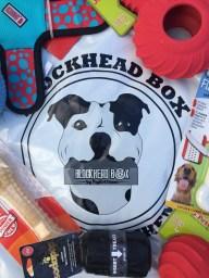 Blockhead Box dog subscription box review