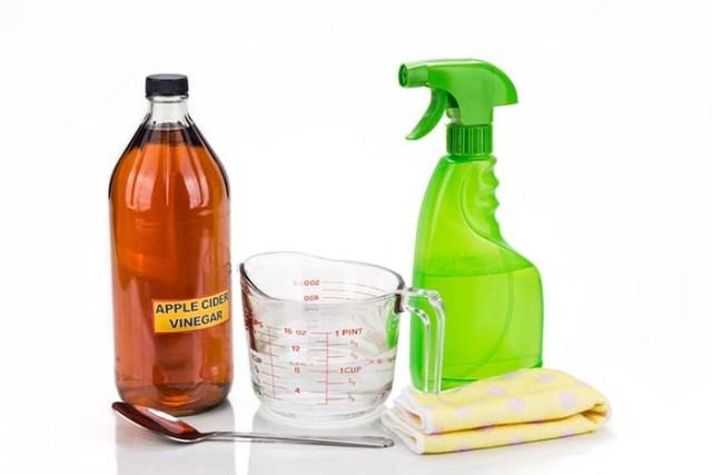 Homemade Flea Spray
