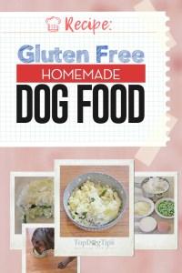 Homemade Gluten Free Dog Food Recipe