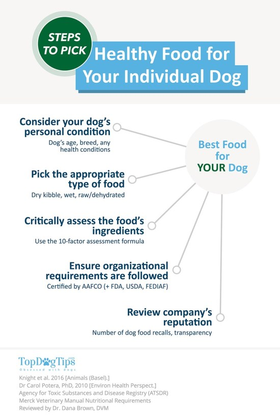 How to Choose Healthy Dog Food Brand