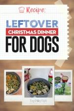 Leftover Christmas Dinner for Dogs Recipe
