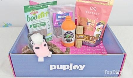 PupJoy dog subscription box