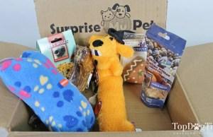 best dog subscription box
