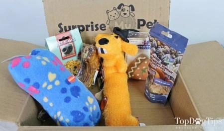 Surprise My Pet dog subscription box