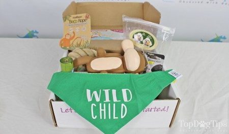 Surprise Pawty Monthly Dog Box