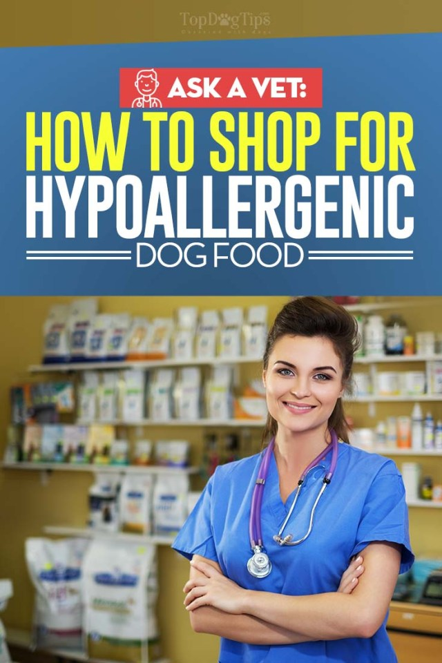 The Veterinarian's Guide on Shopping for Hypoallergenic Dog Foods