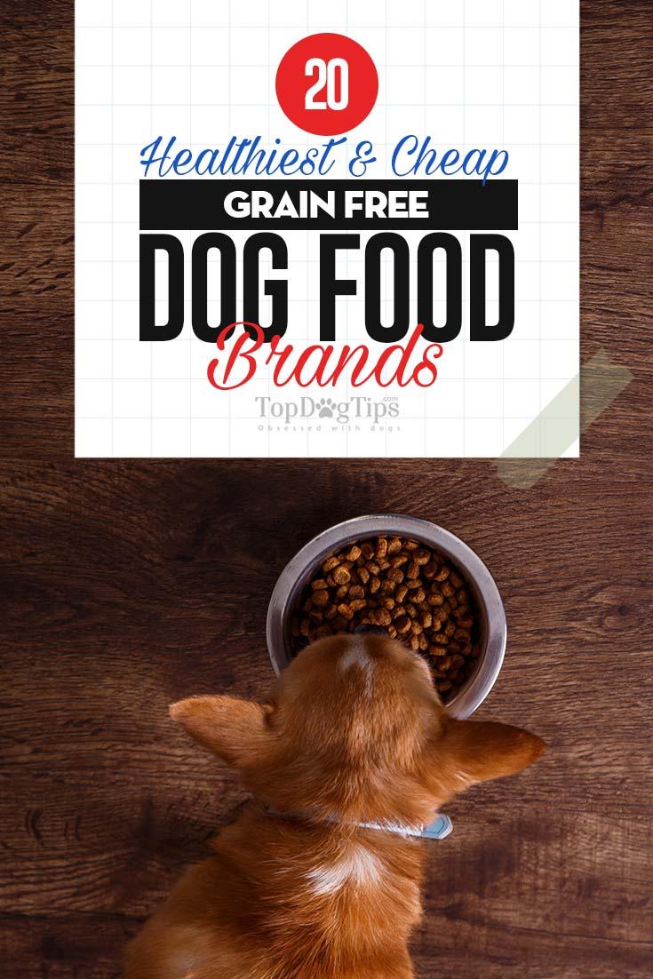 Best Lamb Grain Free Dog Food