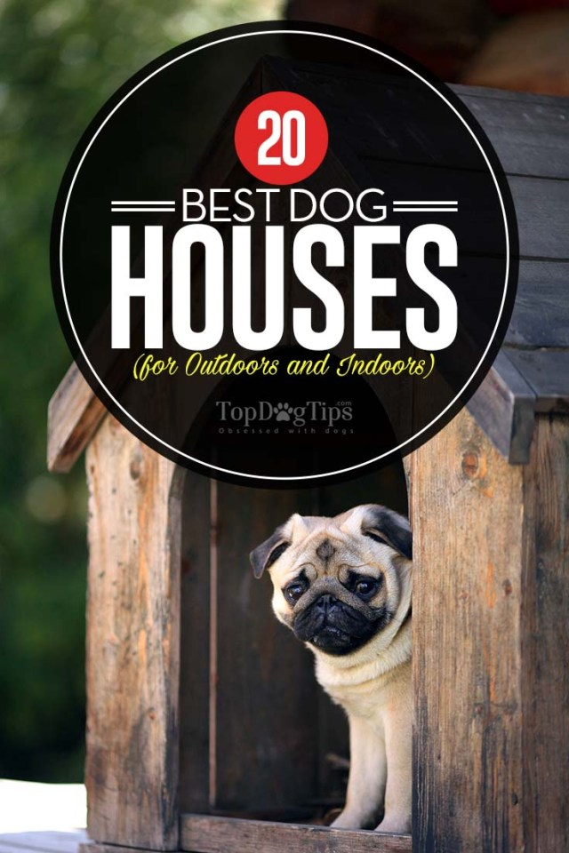 Top Rated Best Dog Houses for Outdoors and Indoors