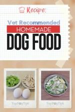 Vet Recommended Homemade Dog Food Recipe