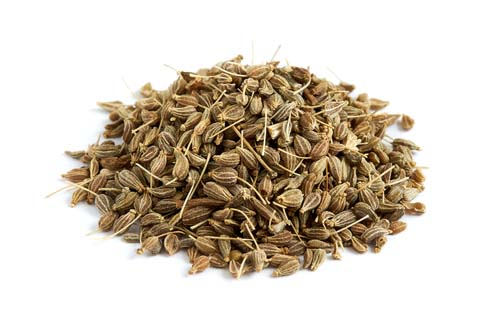 Anise for Dogs