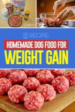 Homemade Dog Food for Weight Gain Recipe