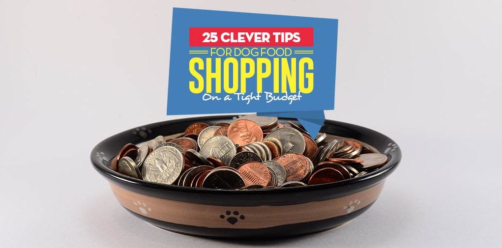 The 25 Clever Tips on Shopping for Dog Food on a Tight Budget