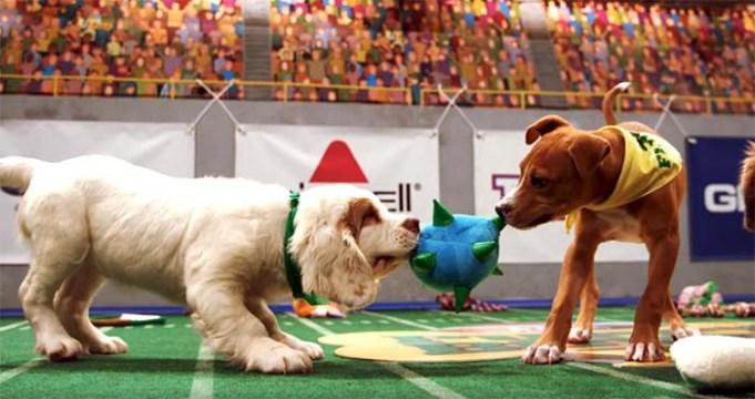 Watch Puppy Bowl Animal Planet