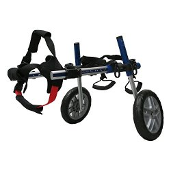 Rear Limb Wheelchair and Mobility Support