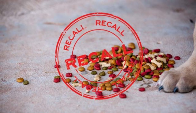 Dog Food Recall Alert - What You Need to Do When You See One
