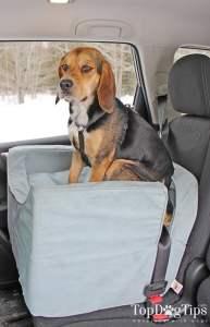 The Necessity of Pet Car Seats