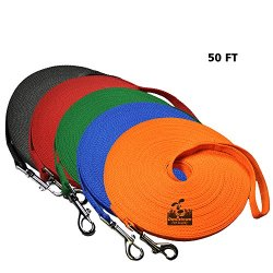 Downtown Pet Supply Dog Lead