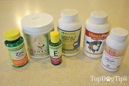 Dog Supplements I Commonly Use in My Homemade Dog Food Recipes