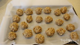 Homemade Dog Food for Pregnant Dogs