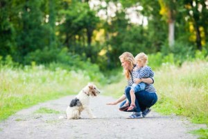 Teaching kids to behave around dogs