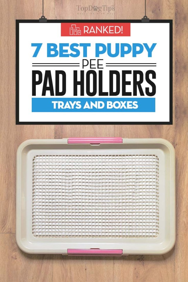 Top 7 Rated Best Puppy Pee Pad Holders