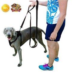 Quirk & Ferg Dog Leash