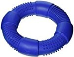 Chase 'n Chomp Go-Ring Pet Chew Toy