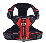 Pupteck Front Range No-Pull Dog Harness