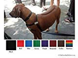 Walk Your Dog with Love No-Choke No-Pull Front-Leading Dog Harness