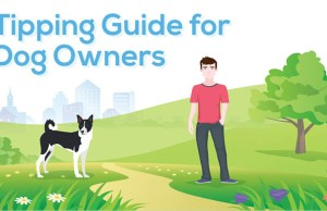 How Much to Tip for Dog Services - Infographic