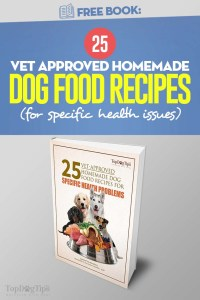 25 Vet Approved Homemade Dog Food Recipes
