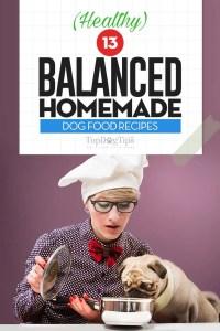 The 30 Best Balanced Homemade Dog Food Recipes
