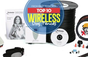Top 10 Best Wireless Dog Fence Systems of 2018