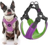 gooby trekking harness