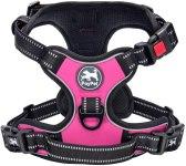 poypet harness