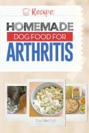 Homemade Dog Food for Arthritis Recipe