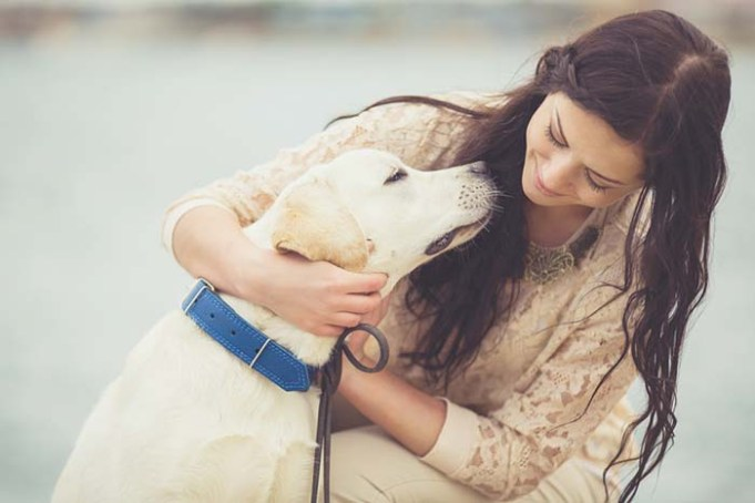 Scientists Explain Why Some Dogs Are Friendlier Than Others