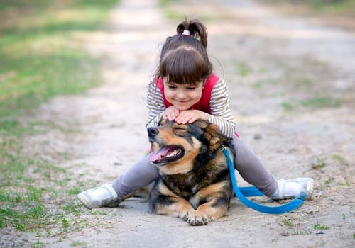 Dogs Need Space Away from Kids