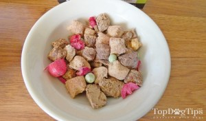 The Simple Food Project Dog Food Review