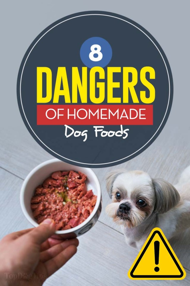 Top 8 Dangers of DIY Homemade Dog Food